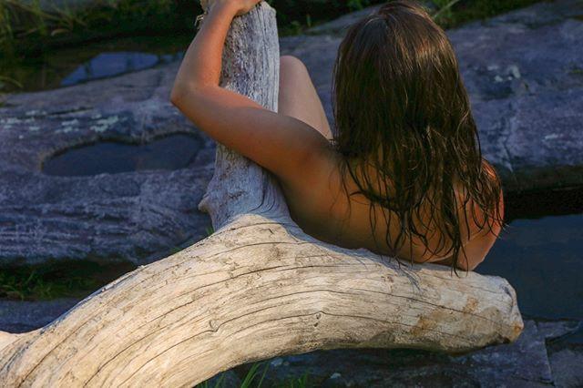 Stone, wood, beauty.jpg