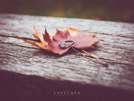 Laura and John's autumnal Pre Wedding Photoshoot at Sandwell Valley.