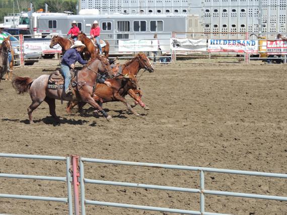 Saturday steer wrestling_edited.jpg