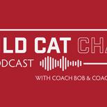 Wild Cat Chat