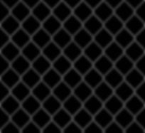 Black Fence.jpg