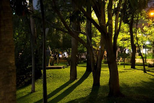 Park - Bangkok