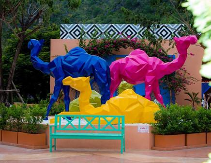 Camel Republic - Hua Hin