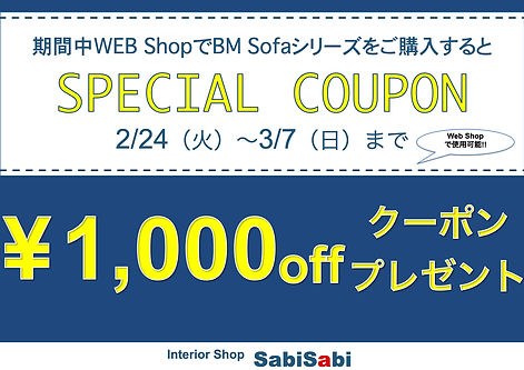 Web Special coupon