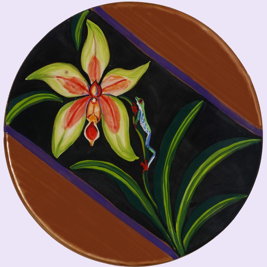 orchid and salamander