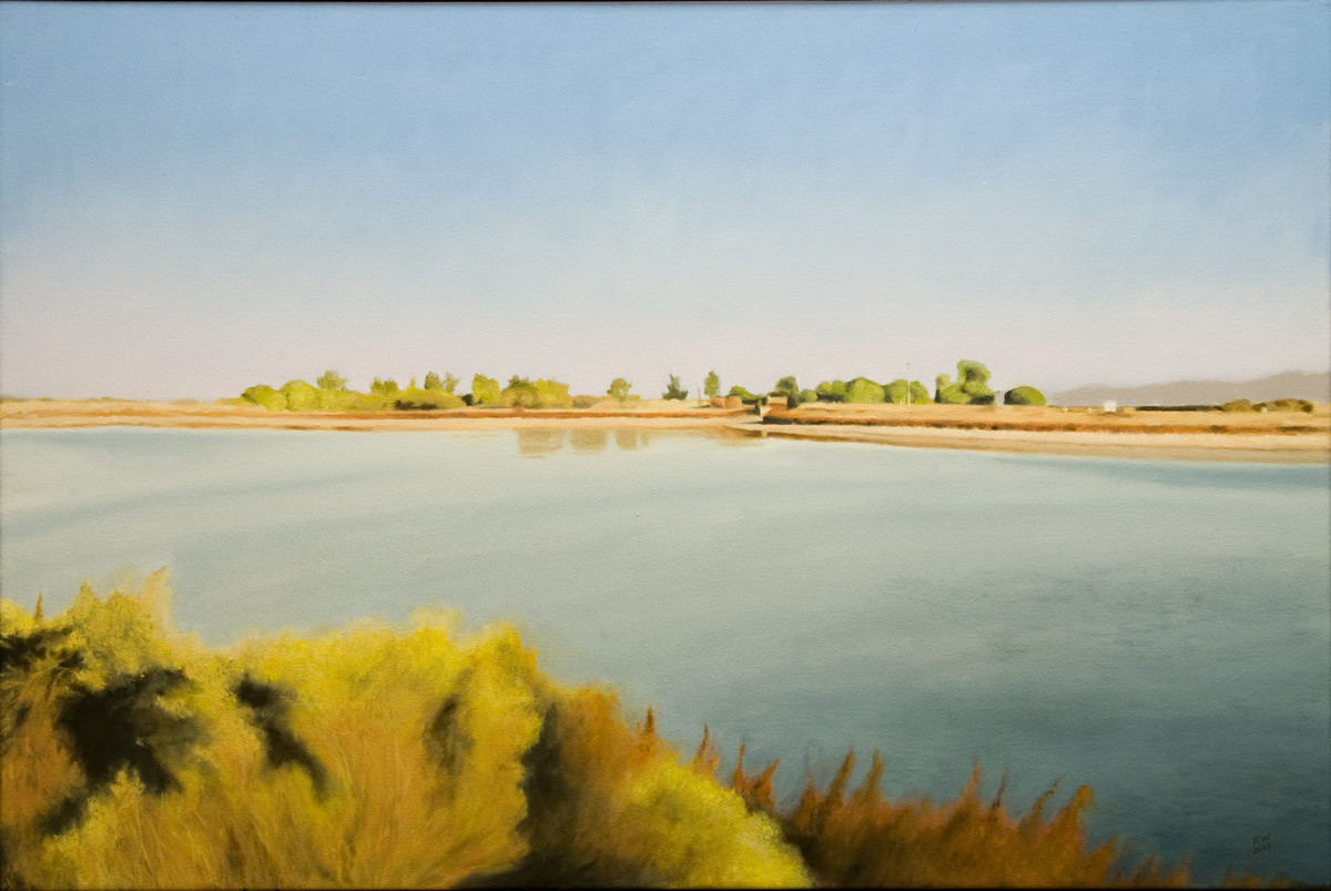 Ponds At Las Gallinas