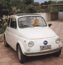 maryfiat car.jpg