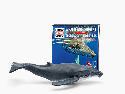 How & Why Whales & Dolphins - Tonie