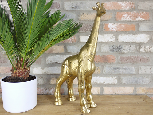 Golden Giraffe