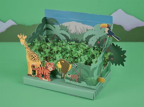 Grow Your Own Mini Jungle