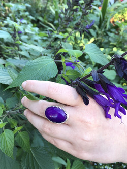 purple ring and garden dpi 300