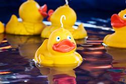 Hook-a-duck