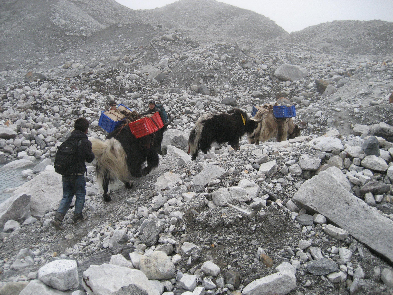 Khumbu 231