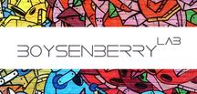 Boysenberry Lab