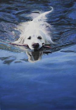 Smooth Sailing by Lisa Gleim