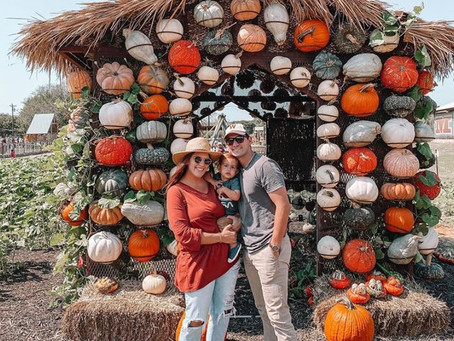 Getting Ready For Your Visit To Mainstay's Pumpkin Patch