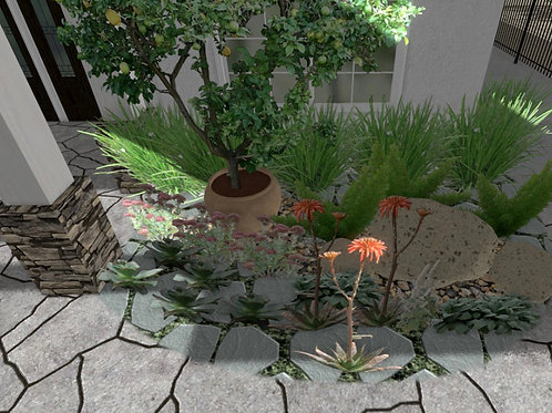 Rain Garden Plan