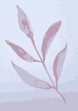 Pink Leave