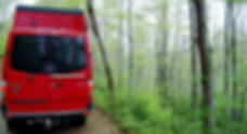 creuent bosc