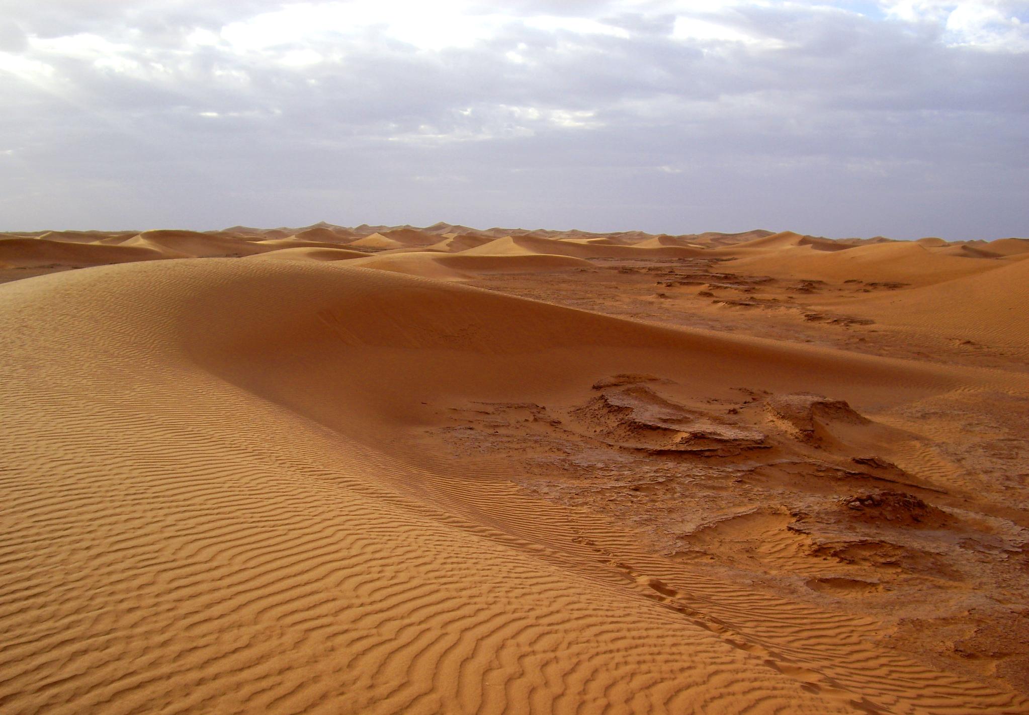 desierto dorado