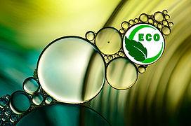 ECO - Meio Ambiente
