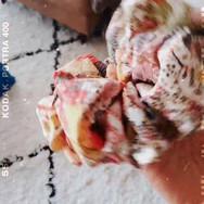 Sana_Mauvey XL scrunchie_part 4.mp4