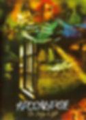 DVD Apocalypse The Bridge of Light