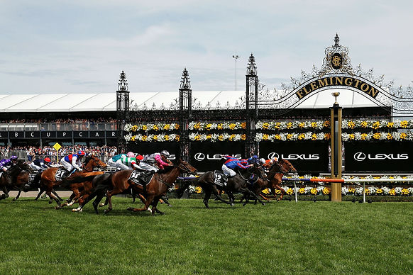 2020 Melbourne Cup Packages