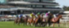 2019 Melbourne Cup Packages