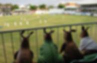 West Indies Cricket Tour 2015