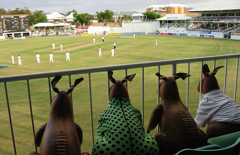 West Indies Cricket Tour 2015