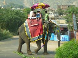 India-2008-(21).jpg