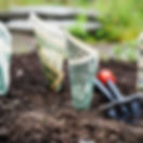 bank-notes-blur-close-up-164474.jpg