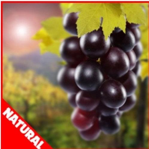 FW  - Grape (Natural) Flavor