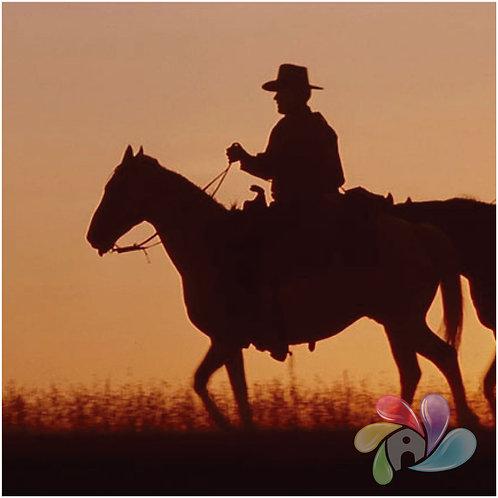 TFA - Western
