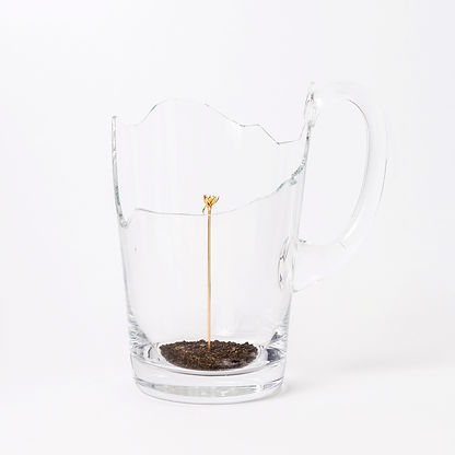 Force of Fragility - Pitcher