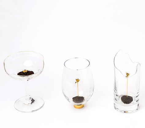 Force of Fragility - Cup