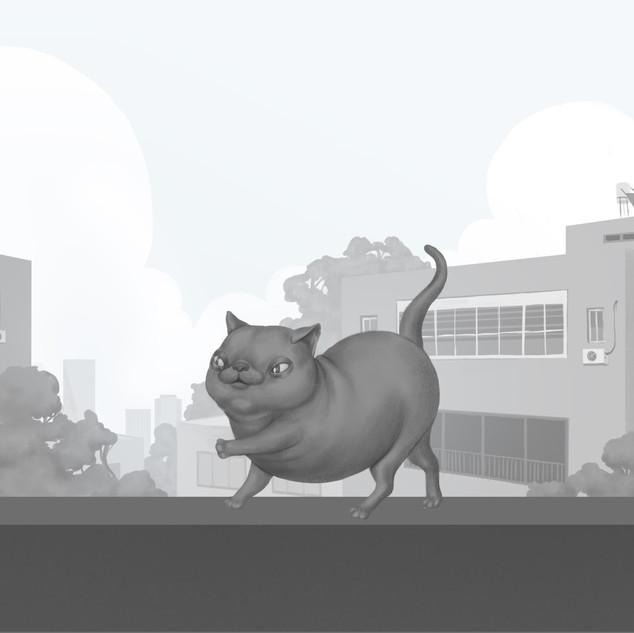 חתול בלנס.jpg