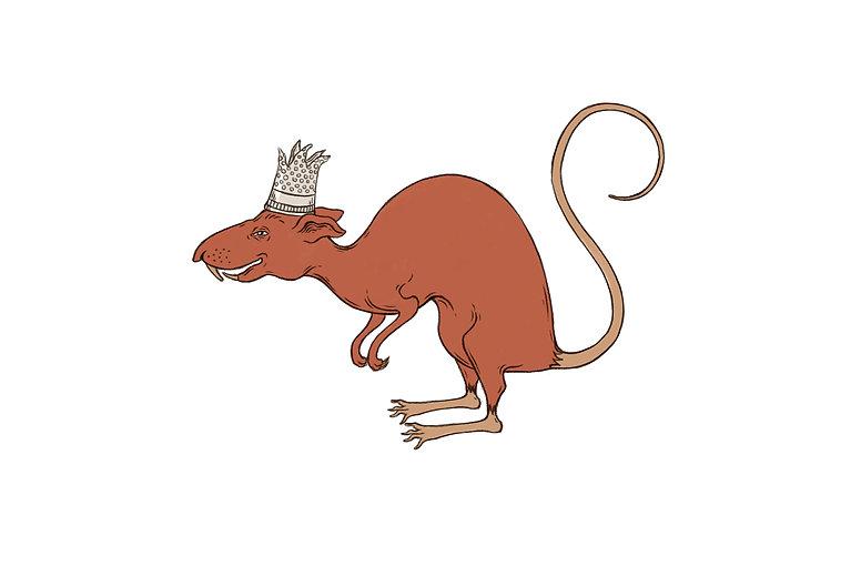 מלך העכברושים.jpg