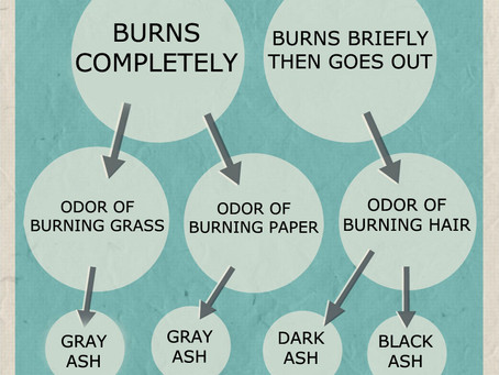 Burn Chart: Belle's Obsession With Burning Things Explained