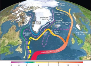 Global Ocean Circulation Appears To Be Collapsing