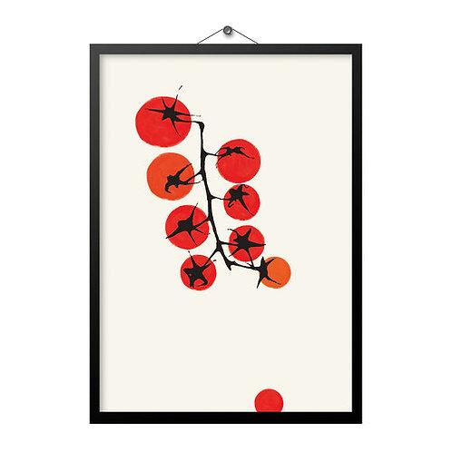 Tomatoes A4 Print