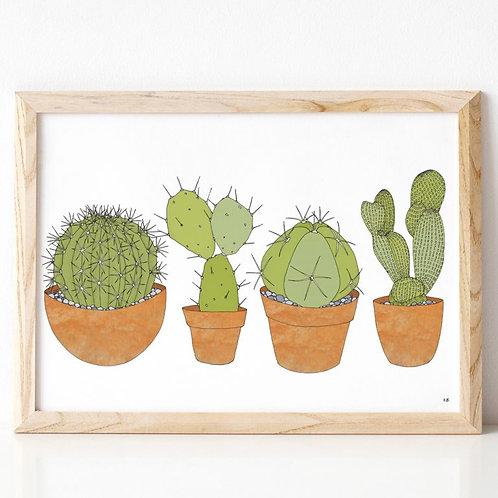 Cacti A3 Print