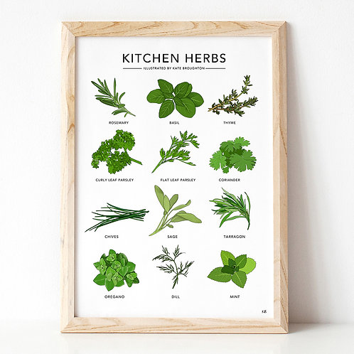 Kitchen Herbs A3 Print
