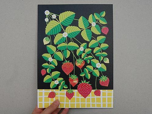 Strawberries A4 Art Print