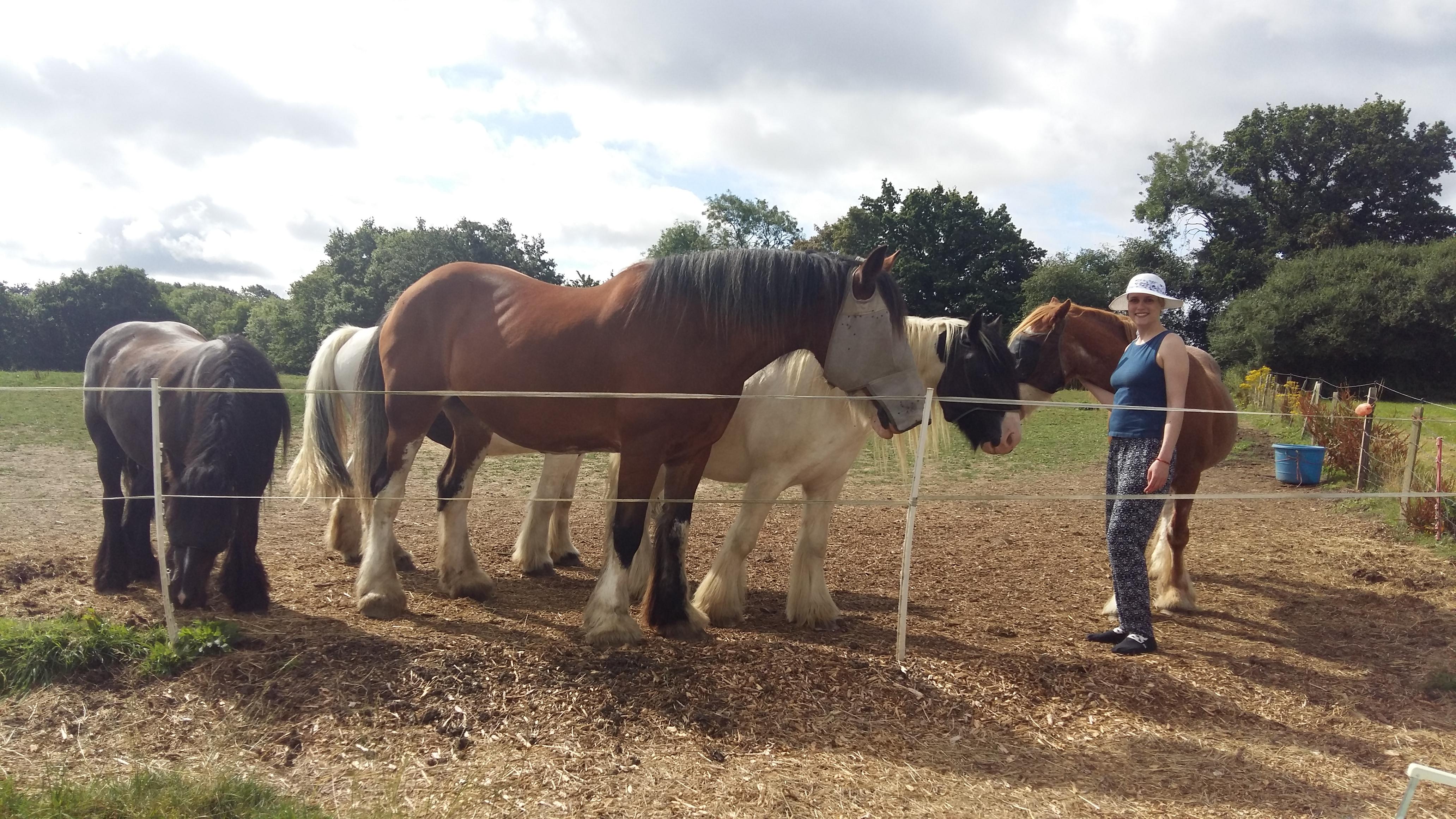 Liz with horses