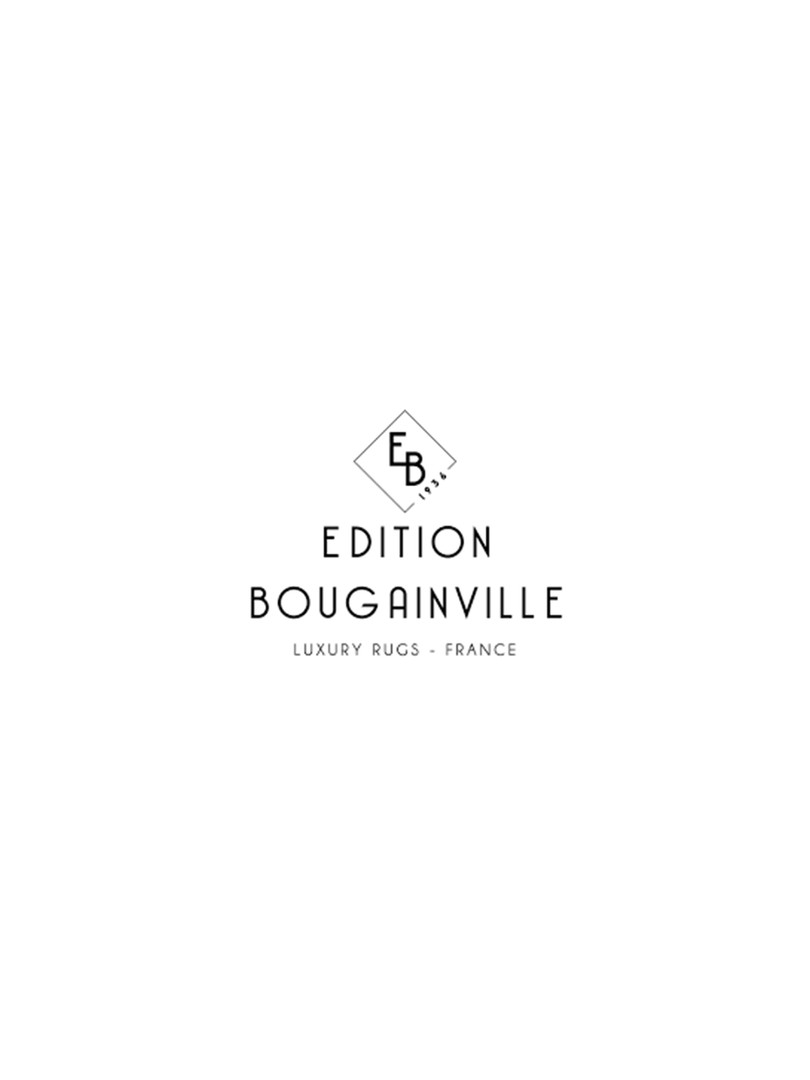 https://www.editionbougainville.com/fr