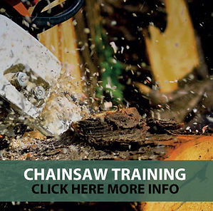 CHAINSAW-TRAINING.jpg