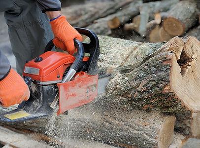 chainsaw-training-page.jpg
