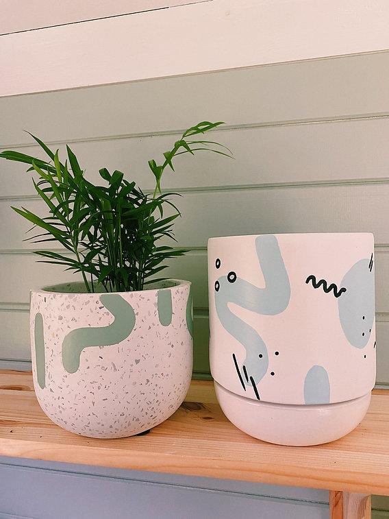 plant pots and plants